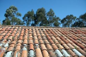 1399736_roof_and_wood