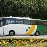 Autobusem na wakacje – przegląd firm oferujących usługi przewozowe