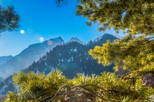 mountains-1439010-m