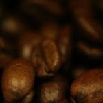 Kawa kapsułkowa – analizujemy opłacalność